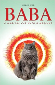 Baba - A Magical Cat with a Message